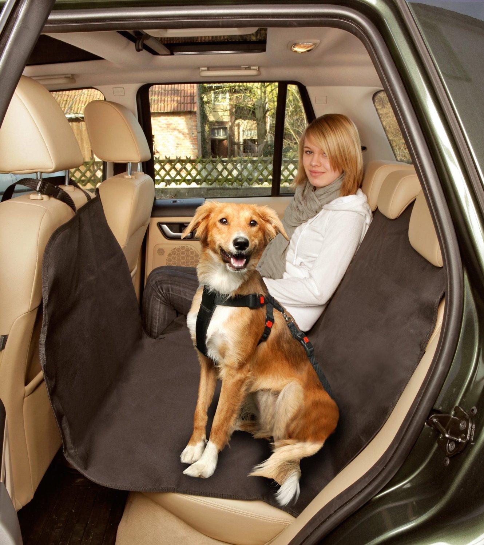 hunde autositz test top 5 test preisvergleich. Black Bedroom Furniture Sets. Home Design Ideas